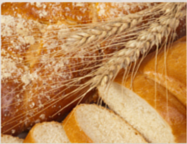 Bread for the Journey: Fall 2015